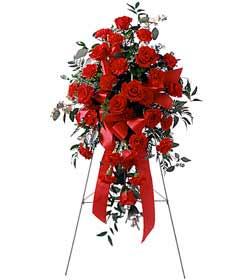 Kırşehir çiçek yolla , çiçek gönder , çiçekçi   perförje çiçegi dügün ve açilis