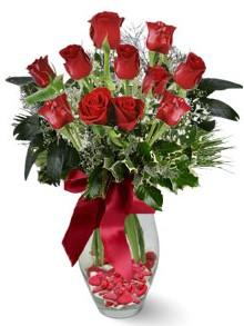 9 adet gül  Kırşehir çiçekçi mağazası  kirmizi gül