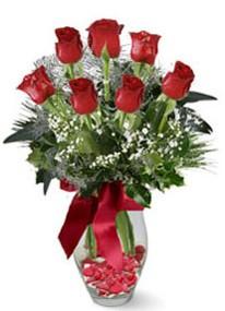Kırşehir internetten çiçek satışı  7 adet kirmizi gül cam vazo yada mika vazoda