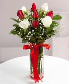 5 kırmızı 4 beyaz gül vazoda  Kırşehir online çiçek gönderme sipariş
