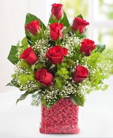 Cam içerisinde 9 adet kırmızı gül  Kırşehir çiçekçi mağazası