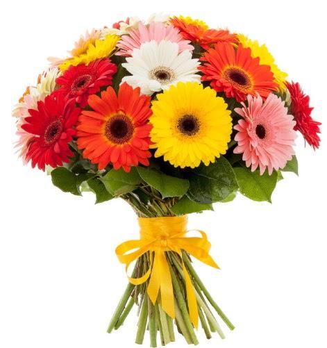 Gerbera demeti buketi  Kırşehir çiçek gönderme