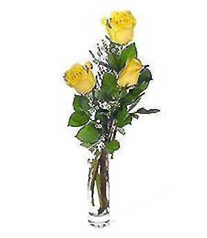 Kırşehir internetten çiçek satışı  3 adet kalite cam yada mika vazo gül