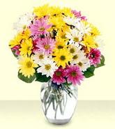 Kırşehir internetten çiçek satışı  mevsim çiçekleri mika yada cam vazo
