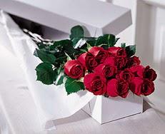 Kırşehir çiçek gönderme  özel kutuda 12 adet gül