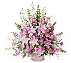 Kırşehir hediye çiçek yolla  Tanzim mevsim çiçeklerinden çiçek modeli