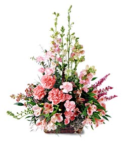 Kırşehir çiçek satışı  mevsim çiçeklerinden özel