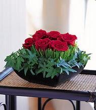 Kırşehir hediye çiçek yolla  10 adet kare mika yada cam vazoda gül tanzim