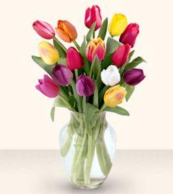 Kırşehir çiçek siparişi sitesi  13 adet cam yada mika vazoda laleler