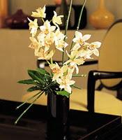 Kırşehir çiçek siparişi sitesi  cam yada mika vazo içerisinde dal orkide