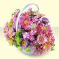 Kırşehir kaliteli taze ve ucuz çiçekler  bir sepet dolusu kir çiçegi  Kırşehir çiçek yolla , çiçek gönder , çiçekçi