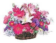 küçük karisik özel sepet   Kırşehir anneler günü çiçek yolla