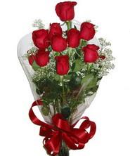 9 adet kaliteli kirmizi gül   Kırşehir güvenli kaliteli hızlı çiçek