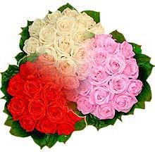 3 renkte gül seven sever   Kırşehir çiçekçi telefonları