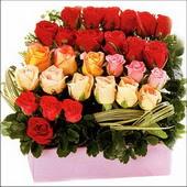 15 adet renkli gül ve cam   Kırşehir ucuz çiçek gönder