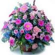 karisik mevsim kir çiçekleri  Kırşehir çiçek yolla , çiçek gönder , çiçekçi