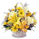 sadece sari çiçek sepeti   Kırşehir çiçek yolla , çiçek gönder , çiçekçi
