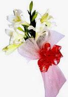 Kırşehir çiçekçi telefonları  ince vazoda gerbera ve ayi