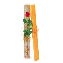 ince  kutuda  1  gül   Kırşehir İnternetten çiçek siparişi