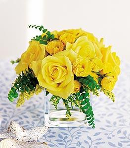 Kırşehir online çiçek gönderme sipariş  cam içerisinde 12 adet sari gül