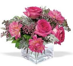 Kırşehir online çiçek gönderme sipariş  cam içerisinde 5 gül 7 gerbera çiçegi