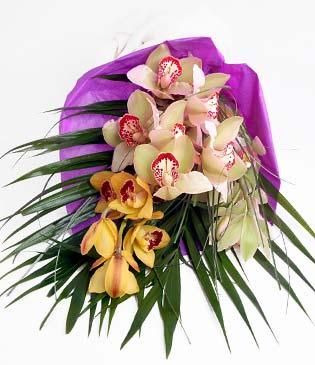 Kırşehir online çiçek gönderme sipariş  1 adet dal orkide buket halinde sunulmakta