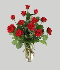 Kırşehir online çiçek gönderme sipariş  11 adet kirmizi gül vazo halinde