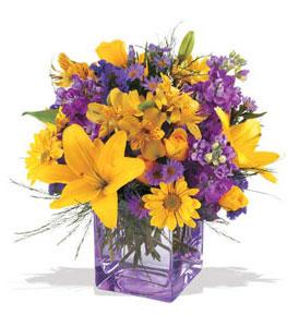 Kırşehir çiçek online çiçek siparişi  cam içerisinde kir çiçekleri demeti