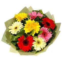 9 adet karisik gerbera demeti  Kırşehir çiçek online çiçek siparişi