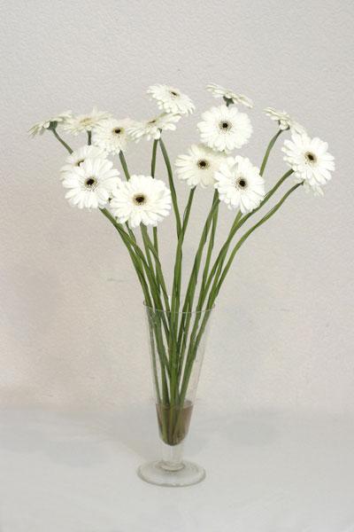 Kırşehir çiçek online çiçek siparişi  cam vazo içerisinde 17 adet sade gerbera