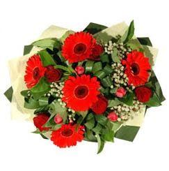 Kırşehir çiçek satışı   5 adet kirmizi gül 5 adet gerbera demeti
