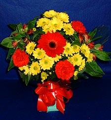 Kırşehir çiçek satışı  sade hos orta boy karisik demet çiçek
