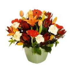 mevsim çiçeklerinden karma aranjman  Kırşehir yurtiçi ve yurtdışı çiçek siparişi