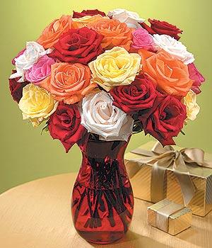 Kırşehir uluslararası çiçek gönderme  13 adet renkli gül