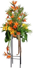 Kırşehir hediye çiçek yolla  perförje tanzimi dügün nikah ve açilislara