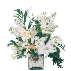 Kırşehir internetten çiçek satışı  sadece beyazlardan olusmus mevsim cam yada mika tanzim