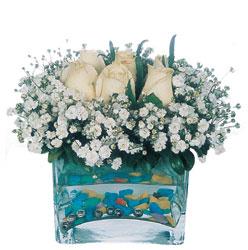 Kırşehir ucuz çiçek gönder  mika yada cam içerisinde 7 adet beyaz gül
