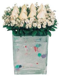 Kırşehir ucuz çiçek gönder  7 adet beyaz gül cam yada mika vazo tanzim