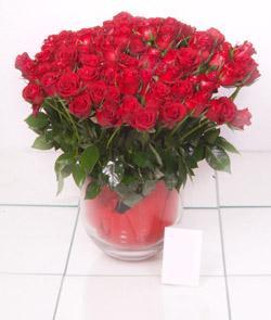 Kırşehir çiçek siparişi vermek  101 adet kirmizi gül