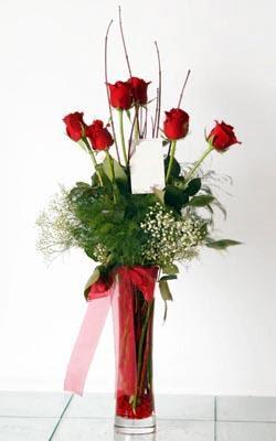 Kırşehir online çiçek gönderme sipariş  6 adet kirmizi gül ve cam yada mika vazo