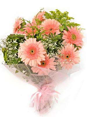 Kırşehir çiçek gönderme  11 adet gerbera çiçegi buketi