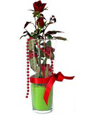 Kırşehir internetten çiçek siparişi  Cam yada mika içerisinde 9 adet kirmizi gül - sevdiklerinize özel