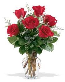 Kırşehir çiçek yolla , çiçek gönder , çiçekçi   7 adet kirmizi gül cam yada mika vazoda sevenlere