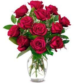 Kırşehir internetten çiçek siparişi  1 düzine kirmizi gül sevenlere özel vazo gülleri