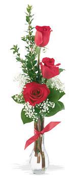 Kırşehir online çiçek gönderme sipariş  mika yada cam vazoda 3 adet kirmizi gül