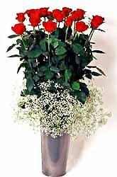 Kırşehir çiçek siparişi vermek  9 adet kirmizi gül cam yada mika vazoda