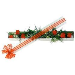 Kırşehir hediye çiçek yolla  6 adet kirmizi gül kutu içerisinde