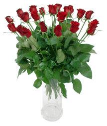 Kırşehir çiçek yolla  11 adet kimizi gülün ihtisami cam yada mika vazo modeli