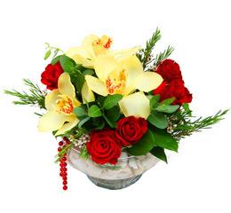 Kırşehir çiçek gönderme sitemiz güvenlidir  1 adet orkide 5 adet gül cam yada mikada