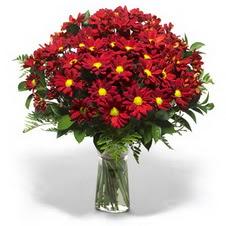 Kırşehir İnternetten çiçek siparişi  Kir çiçekleri cam yada mika vazo içinde
